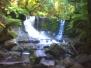 Tasmania Pics